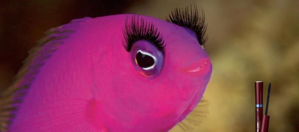 covergirl-waterproof-mascara-pink-fish-small-30409